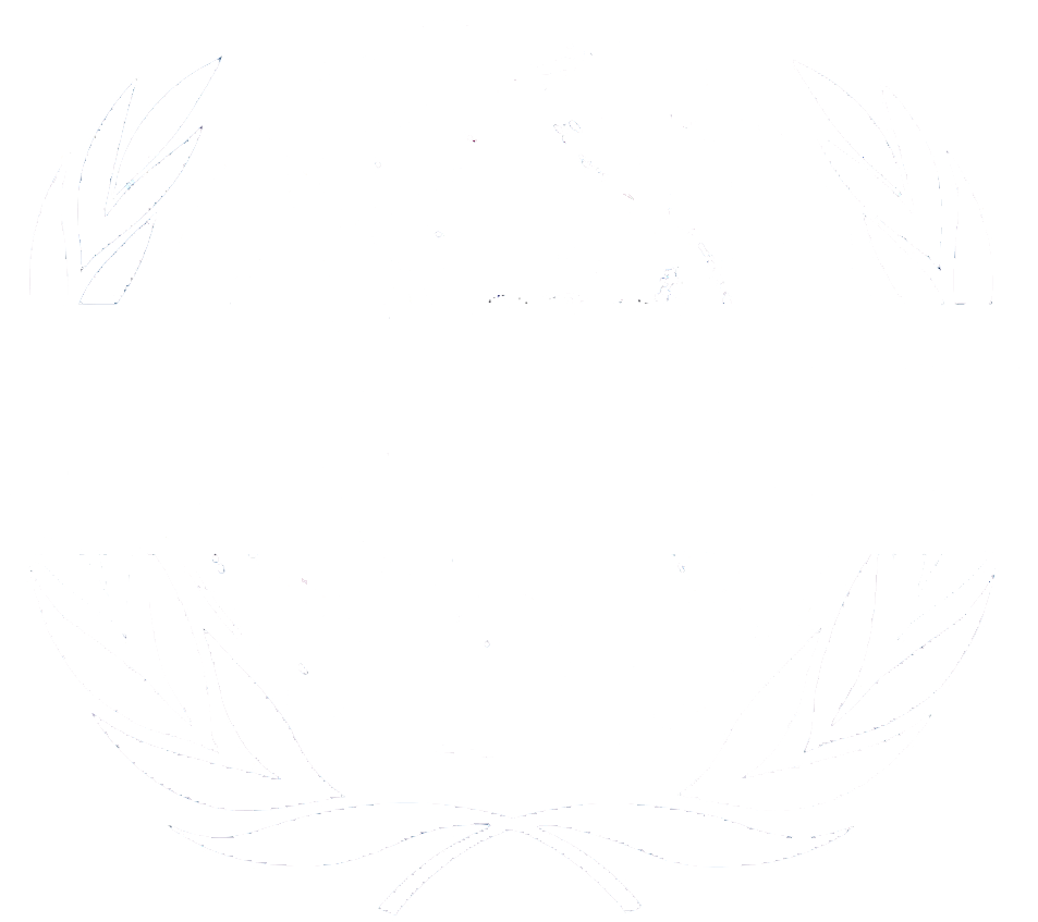 Бизнес-план по международным стандартам